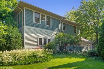 Du Page County Single Family Home For Sale: 385 West Elm Park Avenue