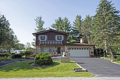 Glen Ellyn Single Family Home For Sale: 23w041 Dickens Avenue