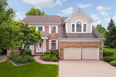 Naperville Condo/Townhouse For Sale: 4105 Stableford Lane