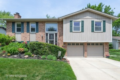 Buffalo Grove Single Family Home For Sale: 325 Red Bud Place