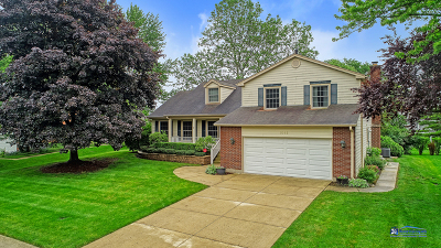 Palatine Single Family Home New: 1085 West Hunting Drive