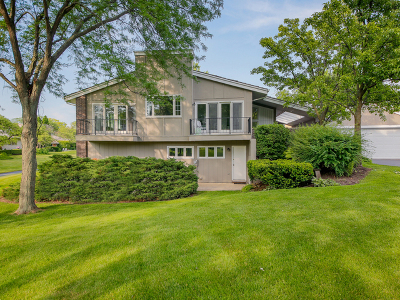 Oak Brook Condo/Townhouse For Sale: 132 Briarwood Avenue