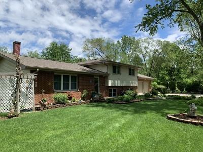 Joliet Single Family Home For Sale: 2507 Garden Street