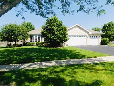 Frankfort Single Family Home For Sale: 21181 Deerpath Road