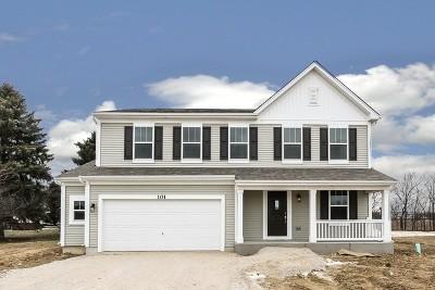 Joliet Single Family Home For Sale: 6616 Eich Lot# 136 Drive