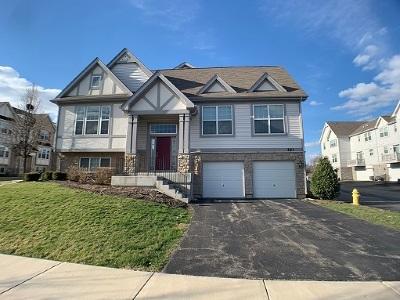 Carol Stream Condo/Townhouse For Sale: 261 Bennett Drive
