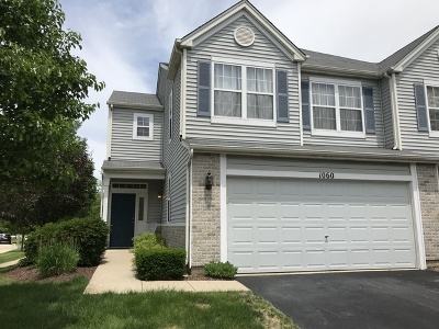 Joliet Condo/Townhouse For Sale: 1060 Colonial Drive #-