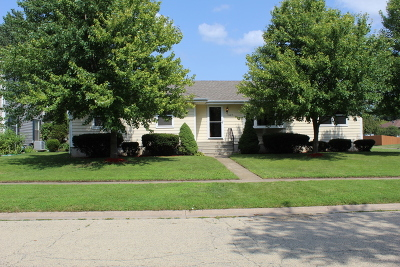 Joliet Single Family Home New: 1624 Cecily Drive