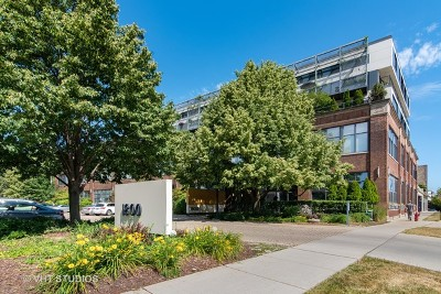 Evanston Condo/Townhouse For Sale: 1800 Ridge Avenue #102