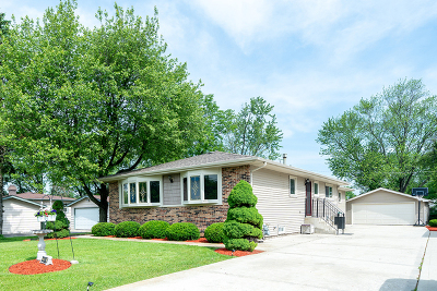 Glen Ellyn Single Family Home For Sale: 22w388 1st Street