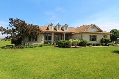 Minooka, Channahon Single Family Home For Sale: 2804 Ninovan Lane