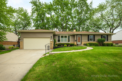 Palatine Single Family Home New: 153 North Norman Drive