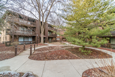 Oak Lawn Condo/Townhouse For Sale: 9609 Austin Avenue #3E