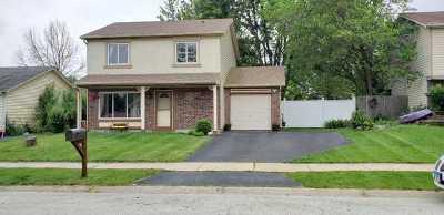 Aurora Single Family Home For Sale: 1065 Norwood Lane