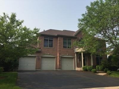Geneva Single Family Home For Sale: 1840 Eldorado Drive