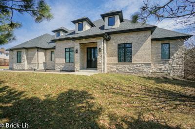 Mokena Single Family Home For Sale: 18039 South Crystal Lake Drive