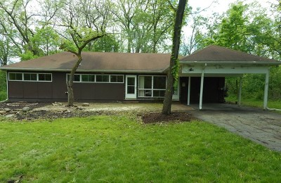 St. Charles Single Family Home For Sale: 4n047 Randall Road