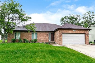 Glen Ellyn Single Family Home For Sale: 365 Danby Drive