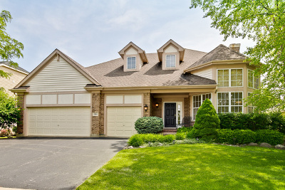 Vernon Hills Single Family Home For Sale: 1305 Maidstone Drive