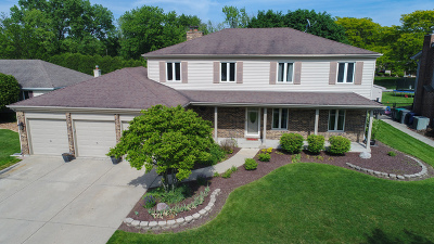 Orland Park Single Family Home For Sale: 13441 Strawberry Lane