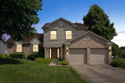 Bartlett Single Family Home For Sale: 520 Eastwick Lane