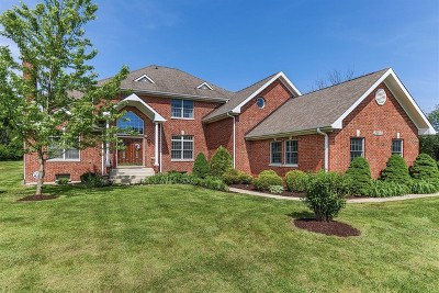 Hawthorn Woods Single Family Home For Sale: 25992 North Milton Road