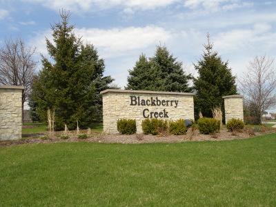 Elburn Residential Lots & Land For Sale: Lot 945 Settler Street
