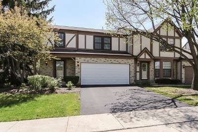 Hoffman Estates Condo/Townhouse For Sale: 4571 Olmstead Drive