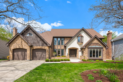 Naperville Single Family Home For Sale: 1425 Ambleside Circle