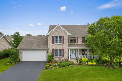 Sugar Grove Single Family Home For Sale: 747 Queens Gate Circle