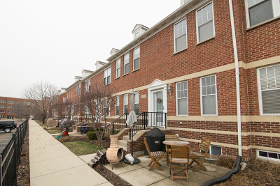 Skokie Condo/Townhouse For Sale: 8211 Lincoln Avenue