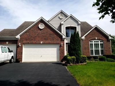 Bolingbrook Single Family Home For Sale: 1571 Woodland Lane