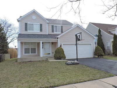 Naperville Single Family Home For Sale: 711 Violet Circle