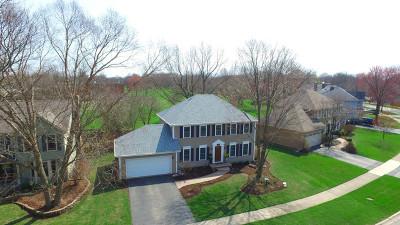 Naperville Single Family Home For Sale: 1248 Bainbridge Drive