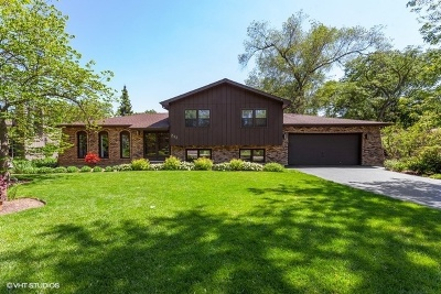 Downers Grove Single Family Home For Sale: 217 Shady Lane