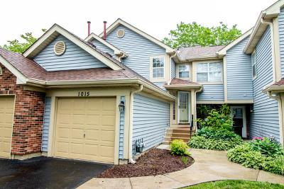 Carol Stream Rental For Rent: 1015 Rockport Drive #1015