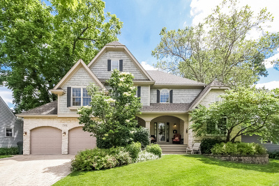 Glen Ellyn Single Family Home For Sale: 781 Prairie Avenue