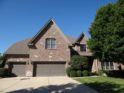 Naperville Single Family Home New: 515 Eagle Brook Lane