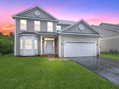 Streamwood Single Family Home New: 6 Trail Ridge Court