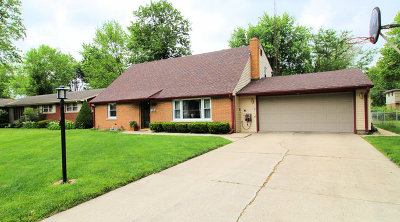 Kankakee Single Family Home For Sale: 1474 West Hawkins Street