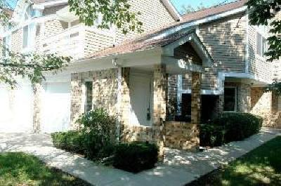 Buffalo Grove Condo/Townhouse For Sale: 1253 Ranch View Court #1253