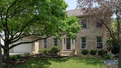 Grayslake Single Family Home Contingent: 671 Brookstone Road