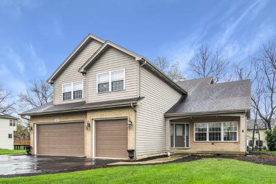 Bartlett Single Family Home For Sale: 463 Pond View Lane