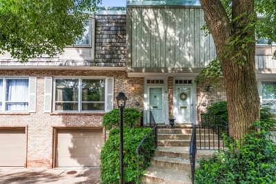 Wilmette Condo/Townhouse For Sale: 1926 Wilmette Avenue #D