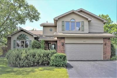 Mokena Single Family Home For Sale: 10412 Willow Avenue