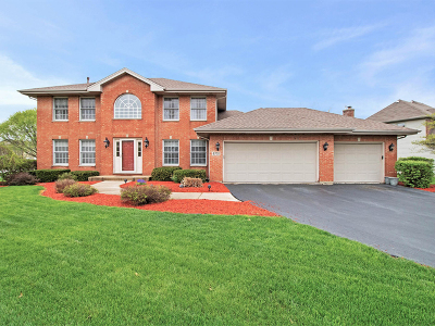 Naperville Single Family Home For Sale: 4731 Chokeberry Drive
