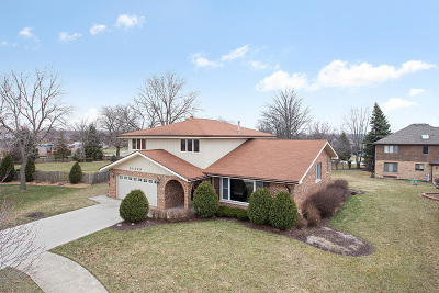 Orland Park Single Family Home For Sale: 14209 Meadowview Court