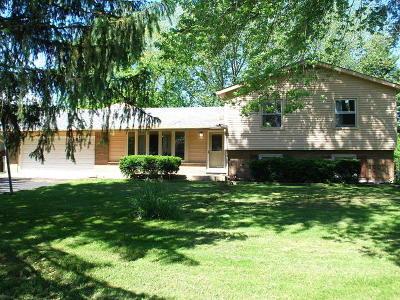 Glen Ellyn Single Family Home For Sale: 2n238 Highland Avenue