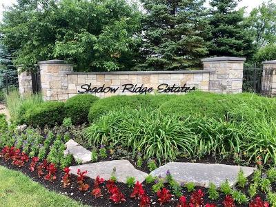 Palos Park Residential Lots & Land For Sale: 211 Forest Edge Drive