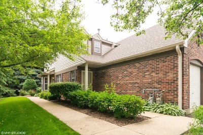 Schaumburg Condo/Townhouse New: 1923 Heron Avenue #A